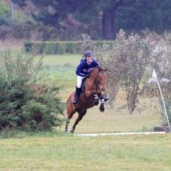Centre équestre Breizh équitation Locoal Mendon Morbihan