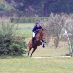 Centre équestre Breizh équitation Locoal Mendon près de Belz, Plouhinec