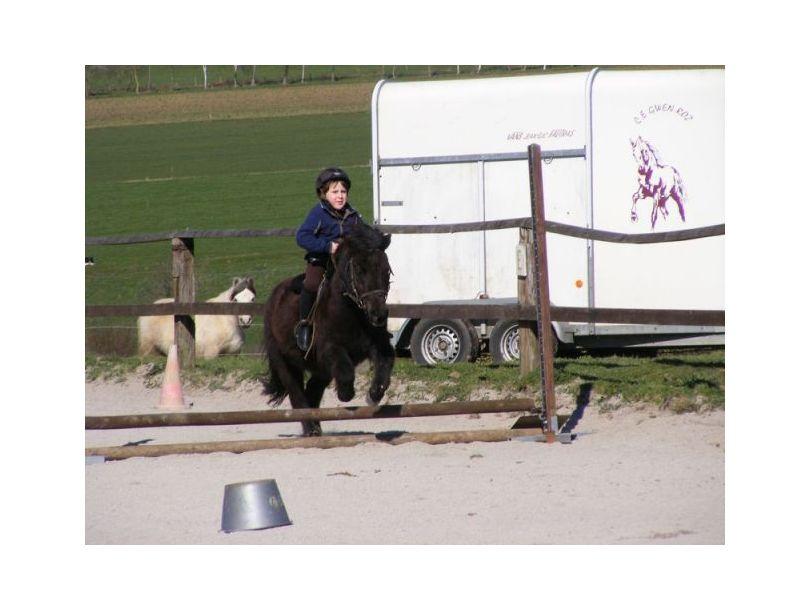 Centre équestre Breizh équitation Locoal Mendon près de Erdeven, Auray