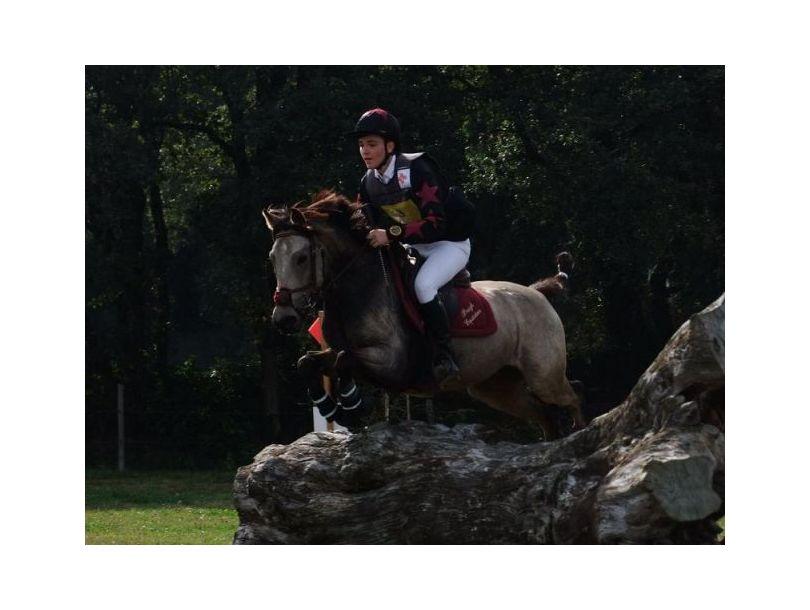 Centre équestre Breizh équitation Locoal Mendon près de Etel, Belz Morbihan