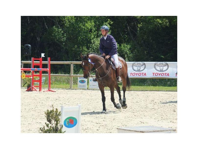 Poney club Breizh équitation Locoal Mendon près de Belz, Etel, Plouhinec